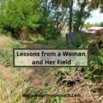 A Woman and Her Field - A Short Story That Matters